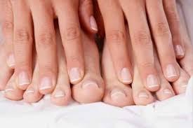 Fresh Fingers българия, original
