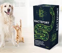 бактефорт аптека, поръчка, Bactefort къде да купя