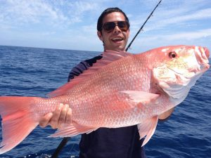Fish XXL поръчка, къде да купя